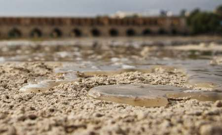 تراژدی بی پایان «نصف جهان» در سال های تلخ کم آبی
