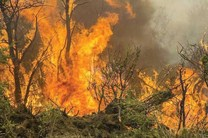 کاهش 80درصدی آتش سوزی درمراتع استان اصفهان نسبت به سال گذشته