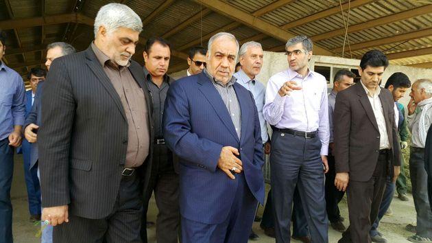 وزیر کار از مجتمع کشت و صنعت استان لرستان بازدید کرد