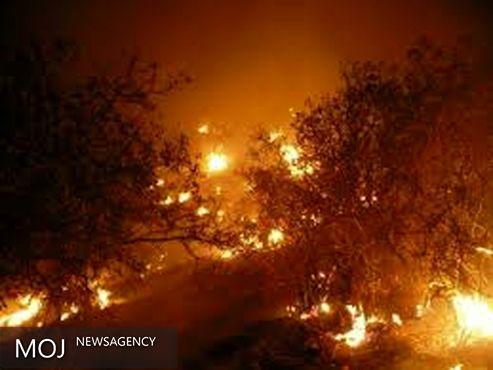 سه مظنون آتش سوزی پاسارگاد دستگیر شدند