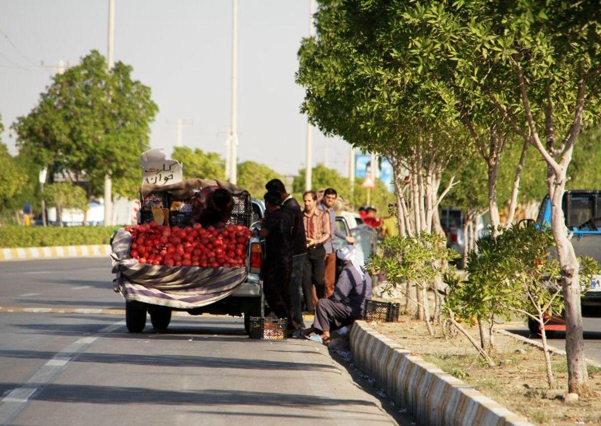 تشکیل پرونده برای وانت بارهای میوه فروش/ ساماندهی وانتبارهای میوهفروش در همدان