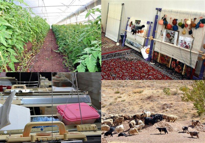 اختصاص ۷ هزار میلیارد اعتبار اشتغال روستایی/تسهیلات ۲ میلیاردی اشتغال به روستاییان