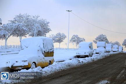 بارش زیبای برف در سنندج