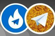 فعالیت تلگرام های ایرانی متوقف شد