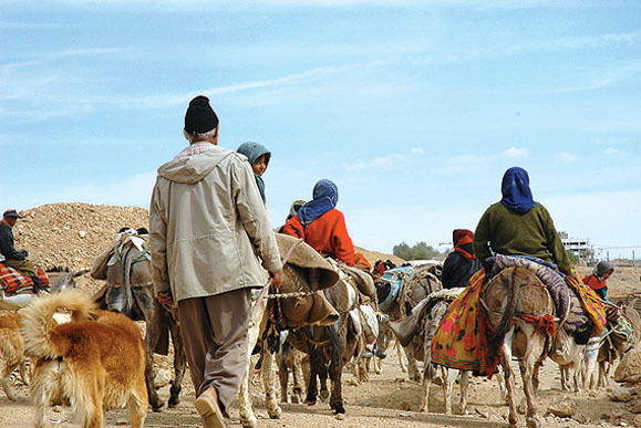 آغاز کوچ عشایر از استان های همجوار به حاجی آباد