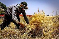 408 میلیارد تومان تسهیلات اشتغال روستایی در هرمزگان اختصاص یافت