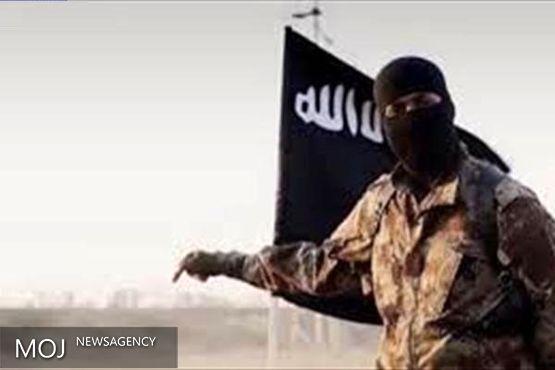 ایران از سنیّها نیز در مبارزه با داعش حمایت میکند
