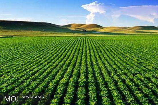 ساخت پهپاد برای نابودی آفات زمین های کشاورزی