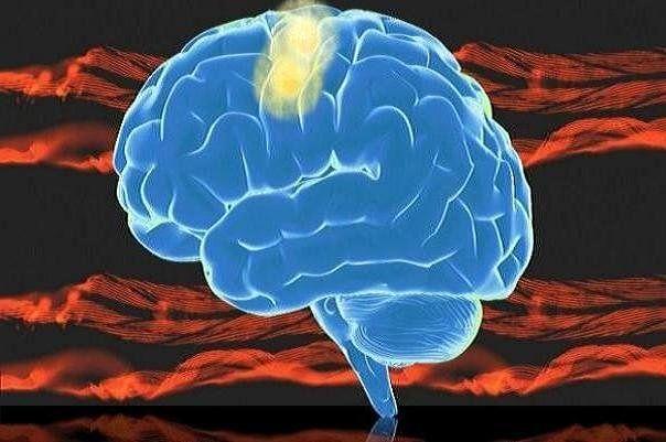 تجهیز مغز انسان به سیستم تخلیه مواد زاید