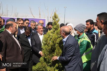 کاشت درخت ایثار
