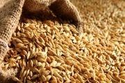 86 مرکز خرید گندم در کردستان دایر است