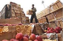 بیش از 200 تن میوه شب عید در هرمزگان توزیع شد
