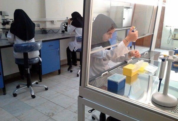 برخورد غیر علمی نظام پزشکی با فارغالتحصیلان میکروبیولوژی