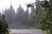 هوای روز طبیعت کرمانشاه بارانی است