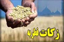 پایگاه جمع آوری زکات فطریه در مازندران برپا می شود