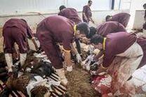 گوشت را فقط از فروشگاههای معتبر خریداری کنید/ گوشت قرمز باید ممهور به مهر دامپزشکی باشد
