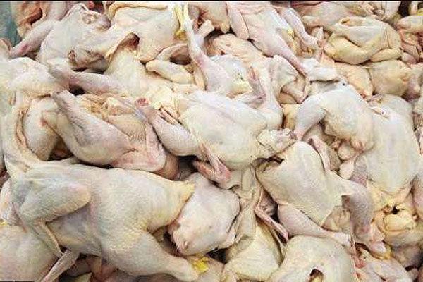 مرغ منجمد 200 تومان ارزان شد/قیمت به 5700 تومان رسید