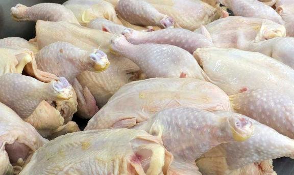 پرواز قیمت مرغ به کانال 12 هزار تومان