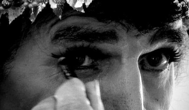 اکران فیلم مستند خرامان در ۶ جشنواره خارجی