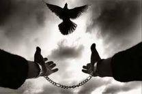رهایی زندانی محکوم به قصاص در هرمزگان
