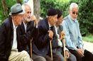 سالمندان سرمایه هایی با تجربیات فراوان هستند