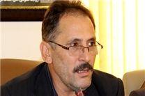 صادرکنندگان مازندران کنسرسیوم صادرات تشکیل دهند