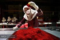 افزایش سرانه مصرف زعفران در کشور