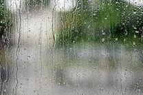 بشاگرد در انتظار هوای بارانی