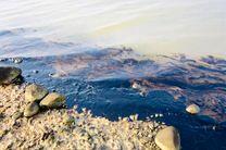 دو نقطه از ساحل بندرعباس از وجود آلودگی های نفتی پاکسازی شد