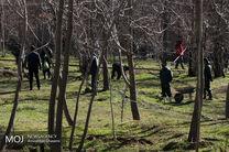 رفع تصرف ۷۵۰۰ متر از باغات تهران