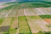 یکپارچه سازی اطلاعات کشاورزی در سامانه «سیاک»
