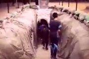 شهادت 2 فلسطینی در حمله جنگندههای اسرائیلی به جنوب غزه