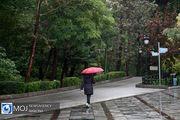 اخطاریه سازمان هواشناسی در خصوص بارش شدید باران
