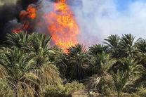 بر اثر رعد و برق نخلستان فاریاب بستک در آتش سوخت