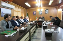 شورای شهرستان برآیندی از توانمندی شوراهای اسلامی شهر و روستا است