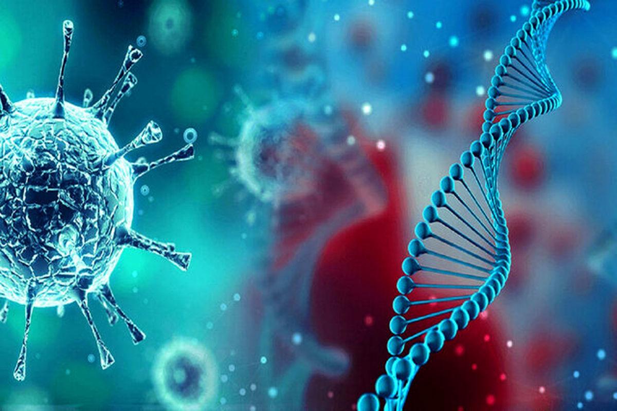 زنگ خطر شیوع ویروس جهش یافته کرونا در هرمزگان