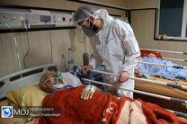 355 بیمار کرونایی در مراکز درمانی قم بستری هستند