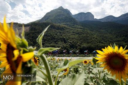 بهترین های مسابقات دوچرخه سواری تور دو فرانس از نگاه رویترز