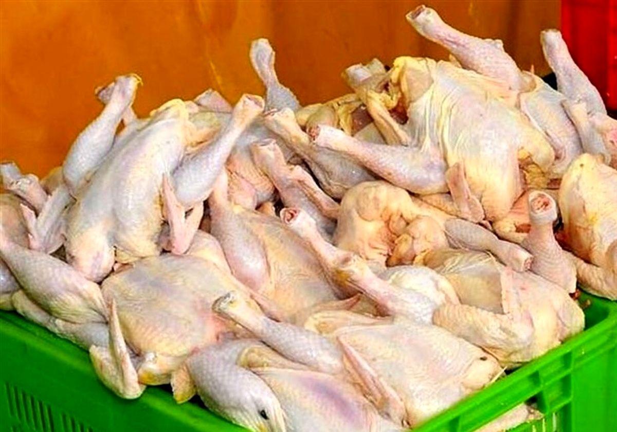 جلوگیری از خروج غیرقانونی مرغ از هرمزگان