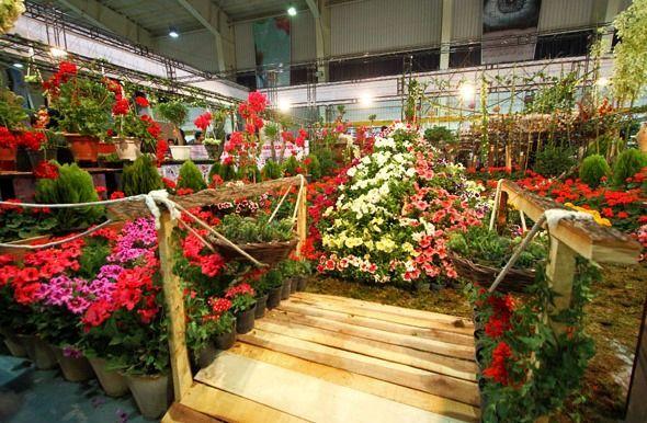 هفتمین نمایشگاه تخصصی گل و گیاه در اصفهان برگزار می شود