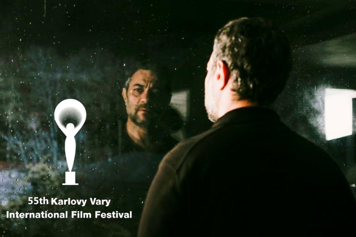 قصیده گاو سفید به جشنواره فیلم کارلوویواری می رود