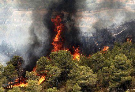 کاهش 66 درصدی در آتشسوزی جنگلهای کرمانشاه/98 درصد عامل آتشسوزیها انسانی است