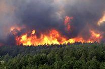 آتش سوزی درجنگل های پلدختر