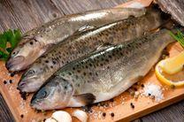 سرانه مصرف ماهی در بروجرد 7 کیلوگرم است