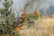 گسترش آتش سوزی منطقه «تنگه قیر» ایلام