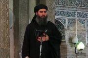 ابوبکر البغدادی به لیبی گریخته است!