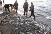 ممنوع شدن صید ماهی در دریاچه سد زاینده رود از امروز