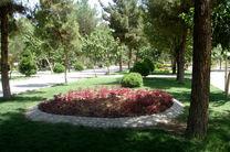باغ ویژه بانوان در تمام مناطق قم احداثمیشود