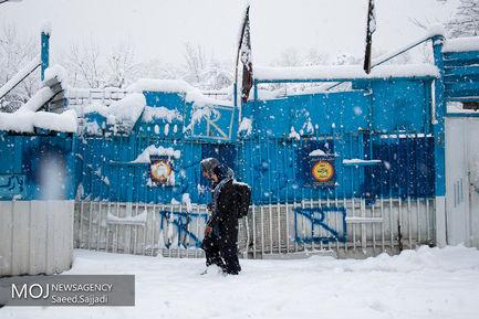 بارش برف در تهران ادامه دارد