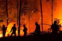 احتمال فوت 100 هزار اروپایی در سال بر اثر تغییرات اقلیمی